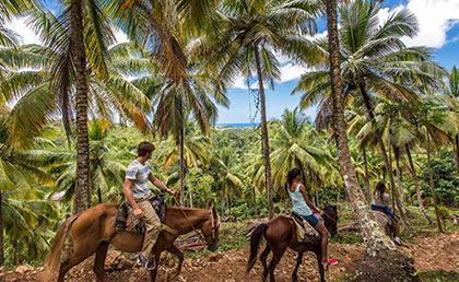Parque Nacional Los Haitises - Samana