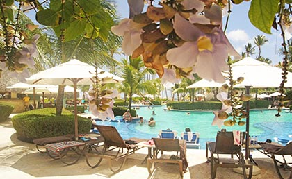 ../Hotel_dreams_Palm_Beach_punta_cana_Resort.htm